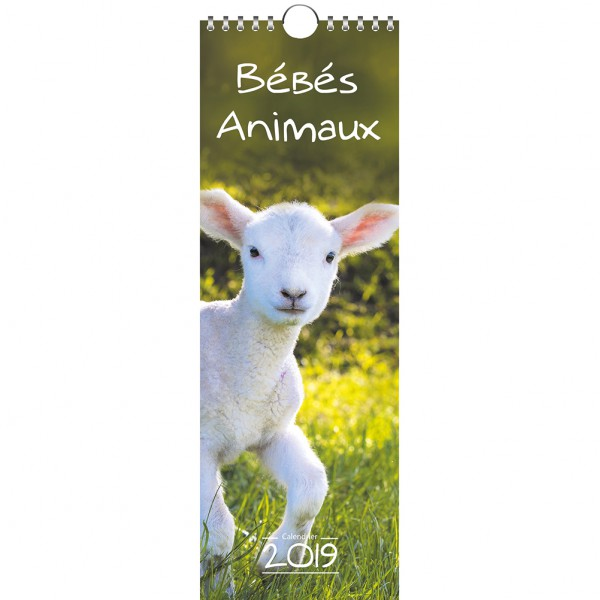 Calendrier Animaux.Calendrier Bebes Animaux Adapei 22
